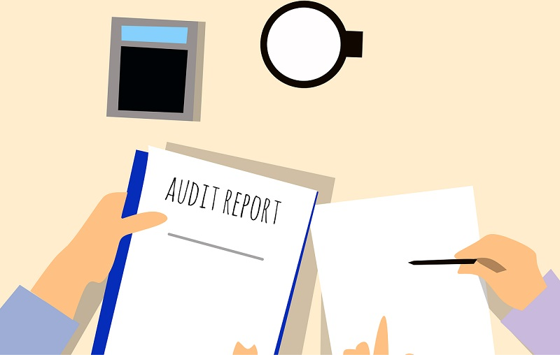 Download Statutory Audit Report of Company and CARO Format for 2019 as per Company Act 2013