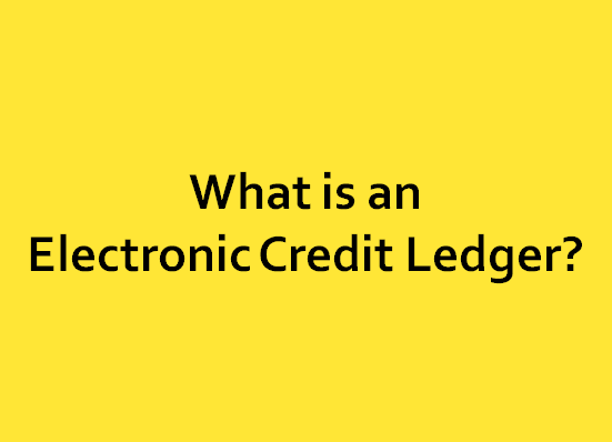 What is an Electronic Credit Ledger?