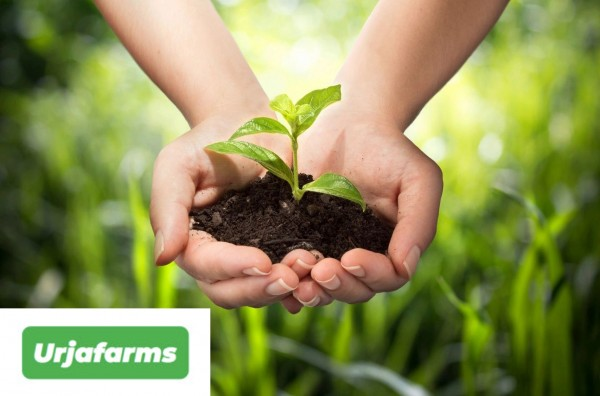 An organisation with the mission to make India better and healthy through its organic farm produce platform connecting farmers, traders, bulk buyers and end-consumers